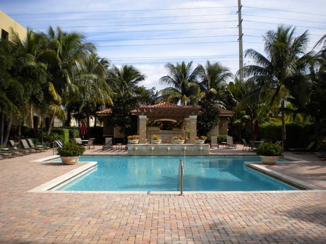 Pet Policy Lake Villa Condos Clearwater Fl