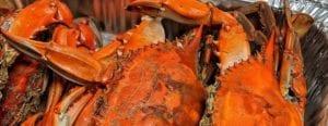 Cajun-Crab - image